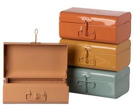 Storage Suitcase 2021