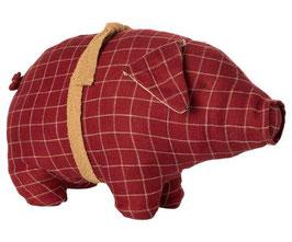 Pig Medium Karo 2020