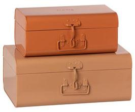 Storage Suitcase Set of 2 powder&rose 2021