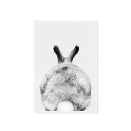 Poster A3 Rabbit (Tafelgut)