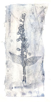 Kräuterkunstblätter