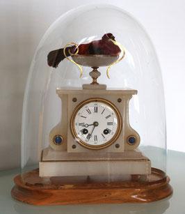 Franz. Tischuhr antik, mit original Glasdome und echtem ausgestopften Vogel