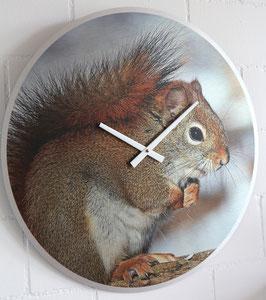 XL Wanduhr Sujet Eichhörnchen - 55 cm Durchmesser - Direktdruck auf silber gebürstete Aluminium-Platte