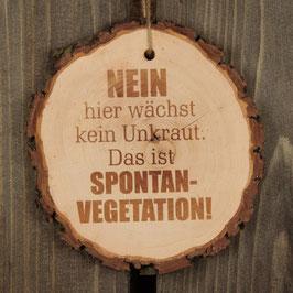 """Baumscheibe """"Spontanvegetation"""""""