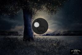 Moonlight  - die Magische