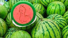 Melone - die Sommerliche