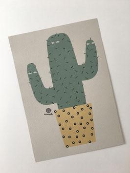 Kaktus-Trio A5.