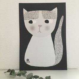 Katze Lotti.