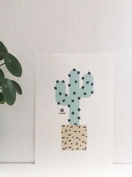 Kaktus abstrakt.