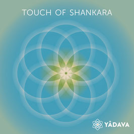 Touch of Shankara
