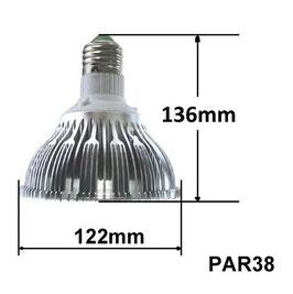 GL54 Vollspectrum LED