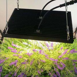 Pflanzenlampe 100 Watt