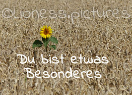 SonneBesonders