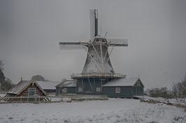 Thema winter: besneeuwde Bolwerksmolen