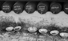 Weinprobe | Klassisches Barytpapier für Ihr schwarz-weiß Foto in Museumsqualität