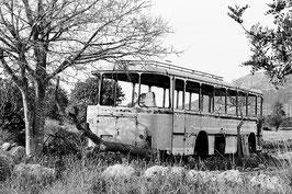 Ein Bus im Feld | Klassisches Barytpapier für Ihr schwarz-weiß Foto in Museumsqualität