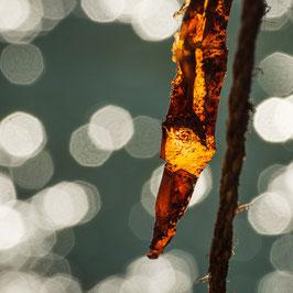 Licht und Energie | Echtes Leinenbild
