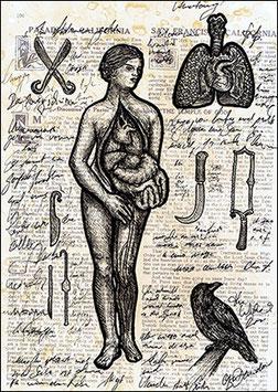 .Anatomy Postkarte.