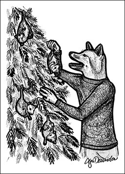 .O Possumbaum Postkarte.