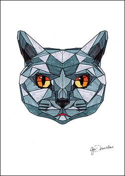 .Hypercat Poster.