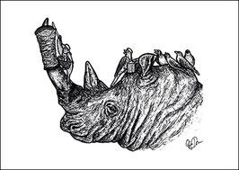 .Döner Rhino Postkarte.