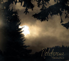 Nebelkorona – Tannenhochforst