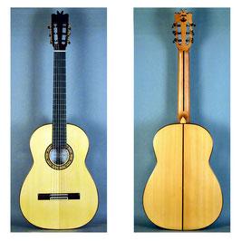 Guitarra Flamenca de Concierto, Miguel Mateo.