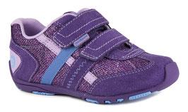 Gehrig violet