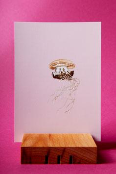 Qualle - Postkarte