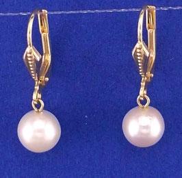 Salzwasser-Perle-15