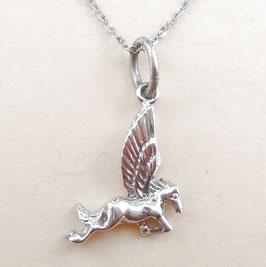 Silber-09 Pegasus