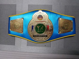 Boxmeyer ''Meistergürtel/ Championship Belt, Kick-Boxen'' Basis 2