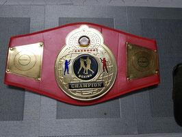 Boxmeyer ''Kunstoff Meistergürtel/ Championship  Belt Boxen Basis 2 ''