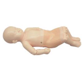 Neugeborenen Hüftsonographie Phantom (n. Graf)