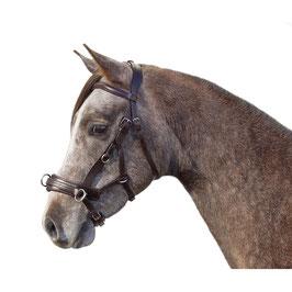 "Multitrense ""German Riding"" 4in1 Cob latigo"