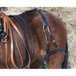 Vierspännerfahrleine Pony