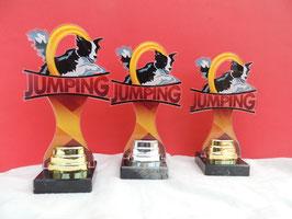 Hundesport Jumping Acryl Pokale