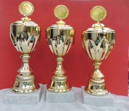 Große 3er Pokalserie gold.