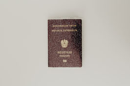 Passport Cover - Pinatex
