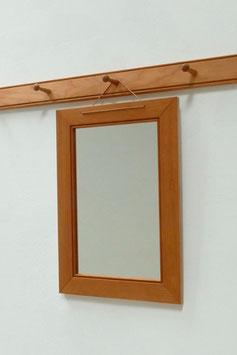 Spiegel  für die Shakerleiste