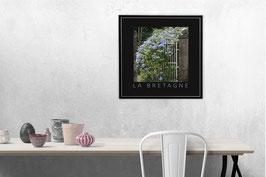 "Poster ""Jardin Sauvage - Bretagne"" | Noir"