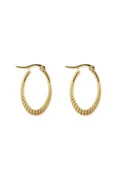 Golden special oval hoops