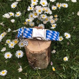 "Hundehalsband ""Stoff weiß-blau"""
