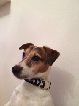 "Hundehalsband Sterne ""weiß-schwarz"""