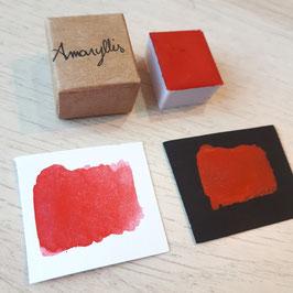 """""""Amaryllis"""" 1/2 godet aquarelle - Pigmentarium"""