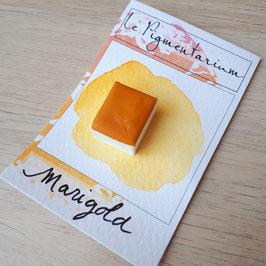"""""""Marigold"""" - aquarelle Pigmentarium"""