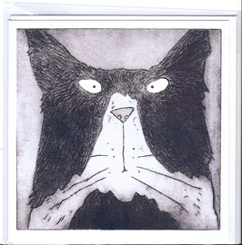 'Tom Cat' Blank Inside Greeting Card