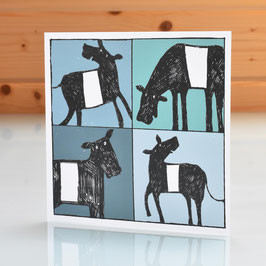 'Belted Galloway' Cow Blank Inside Greeting Card
