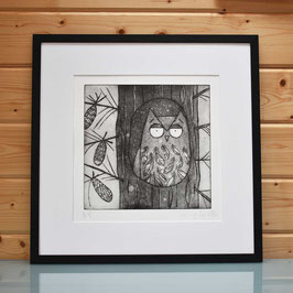 'Within The Pines' Owl In Pine Tree Etching Print