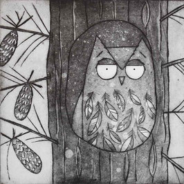 'Within The Pines' Owl In Pine Tree Etching Print (Seconds)